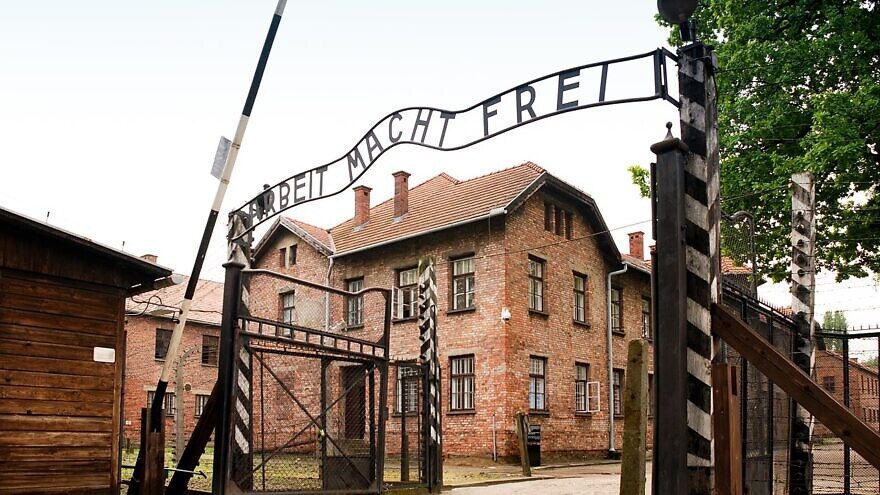 Minnesota high-schoolers apologize for TikTok video mocking Auschwitz